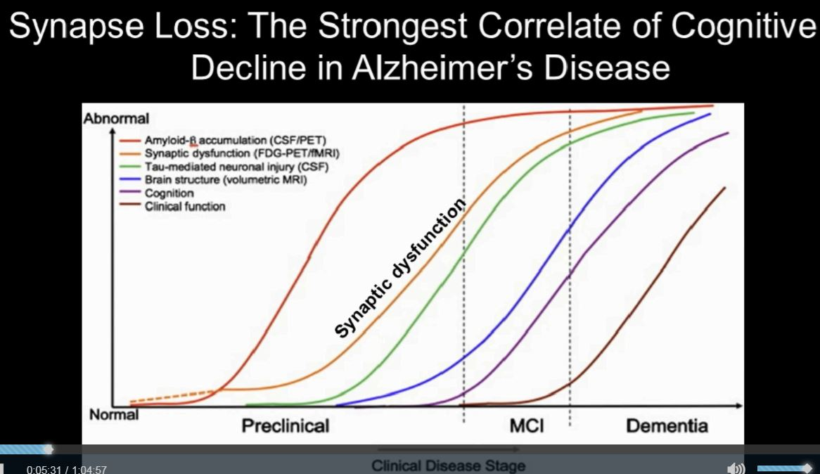Early synapse loss to alzheimers disease brain disease senior early synapse loss to alzheimers disease brain disease senior care womens health fandeluxe Choice Image